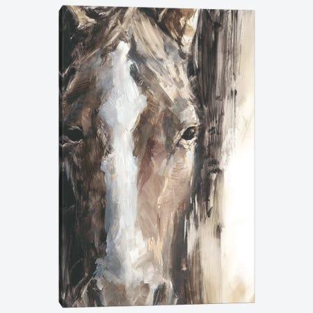 Cropped Equine Study II Canvas Print #EHA826} by Ethan Harper Art Print