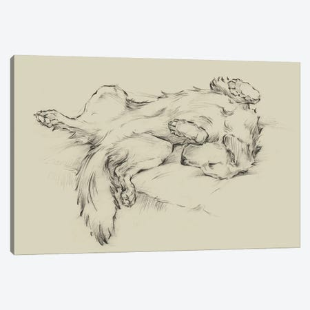 Dog Tired II Canvas Print #EHA828} by Ethan Harper Canvas Art