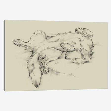 Dog Tired II Canvas Print #EHA828} by Ethan Harper Canvas Art