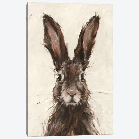 European Hare I Canvas Print #EHA854} by Ethan Harper Canvas Artwork