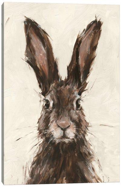 European Hare I Canvas Art Print