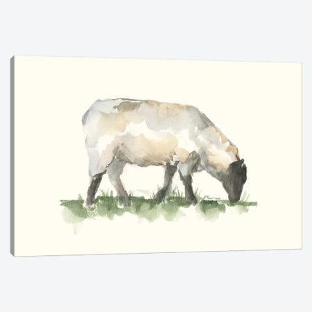 Grazing Farm Animal III Canvas Print #EHA857} by Ethan Harper Canvas Wall Art