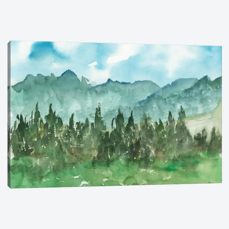 Stand of Evergreens II Canvas Print #EHA863} by Ethan Harper Canvas Art