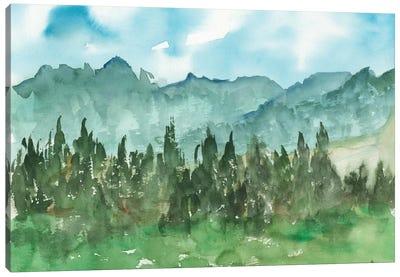 Stand of Evergreens II Canvas Art Print