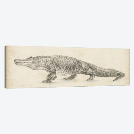 Alligator Sketch Canvas Print #EHA866} by Ethan Harper Canvas Print