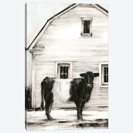 Belted Galloway I Canvas Print #EHA867} by Ethan Harper Canvas Print