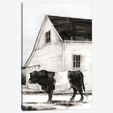 Belted Galloway II Canvas Print #EHA868} by Ethan Harper Canvas Artwork