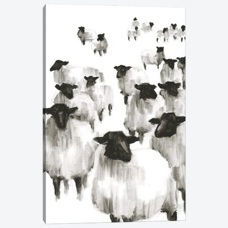 Counting Sheep I Canvas Print #EHA876} by Ethan Harper Canvas Wall Art