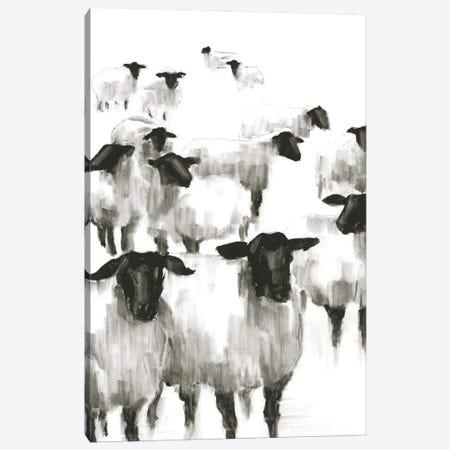 Counting Sheep II Canvas Print #EHA877} by Ethan Harper Canvas Artwork