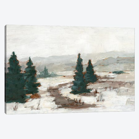 Melting Snow I Canvas Print #EHA887} by Ethan Harper Canvas Print