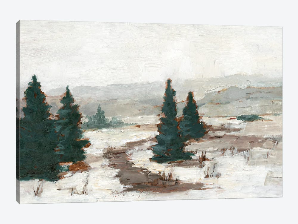 Melting Snow I by Ethan Harper 1-piece Canvas Art Print