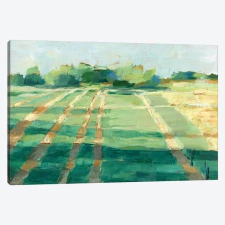 Mid Summer Shadows I Canvas Print #EHA888} by Ethan Harper Canvas Wall Art