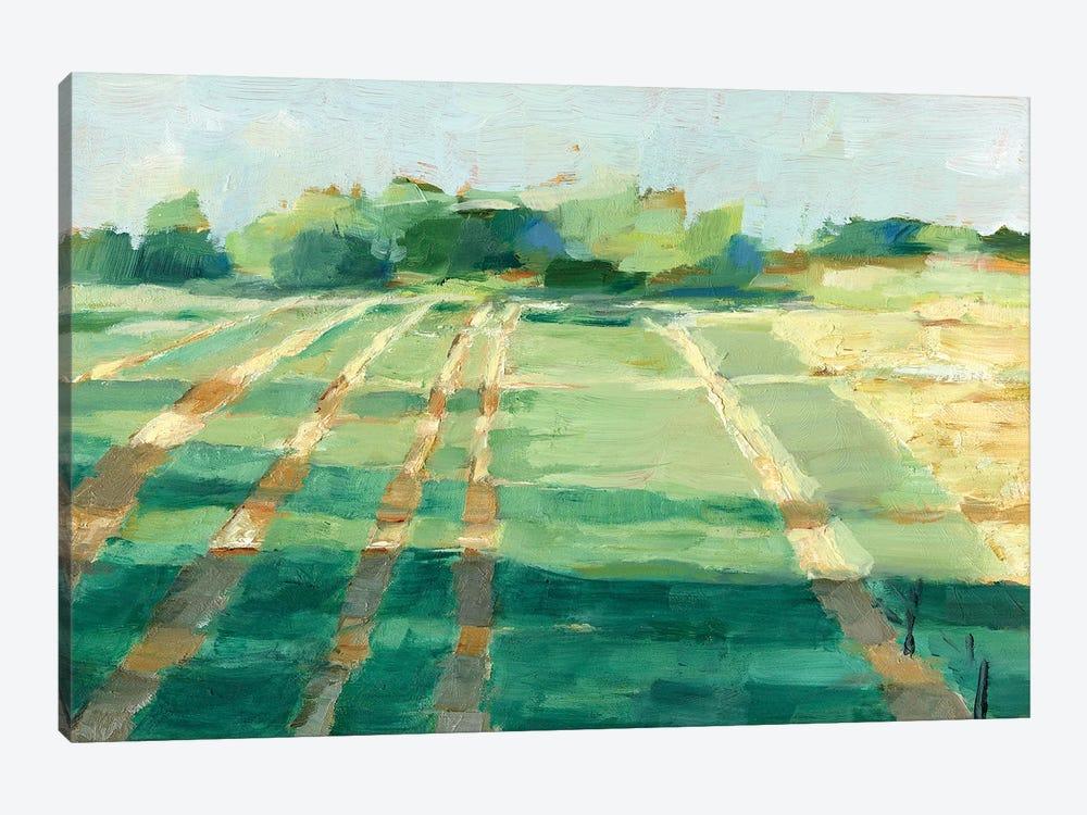 Mid Summer Shadows I by Ethan Harper 1-piece Canvas Wall Art