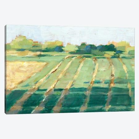 Mid Summer Shadows II Canvas Print #EHA889} by Ethan Harper Canvas Art