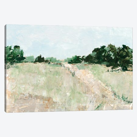Mint Fields II Canvas Print #EHA891} by Ethan Harper Canvas Art Print