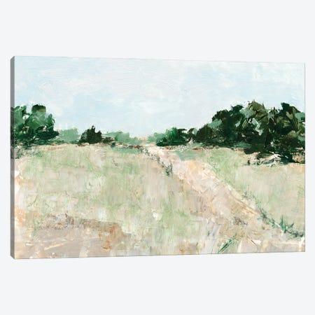 Mint Fields II Canvas Print #EHA891} by Ethan Harper Canvas Art Print