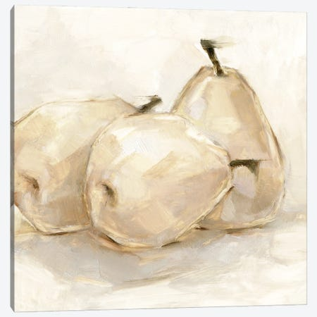 White Pear Study II Canvas Print #EHA914} by Ethan Harper Art Print