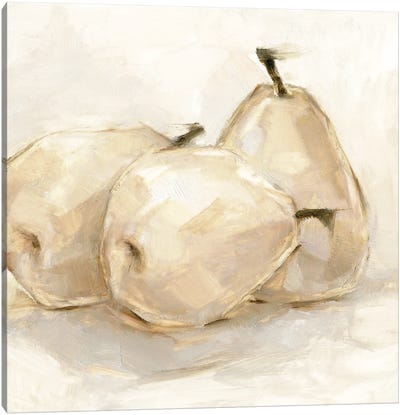 White Pear Study II Canvas Art Print