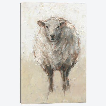 Fluffy Sheep I Canvas Print #EHA921} by Ethan Harper Canvas Print