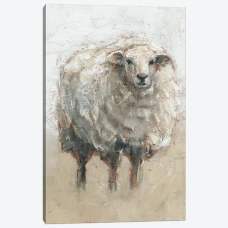 Fluffy Sheep II Canvas Print #EHA922} by Ethan Harper Canvas Art Print