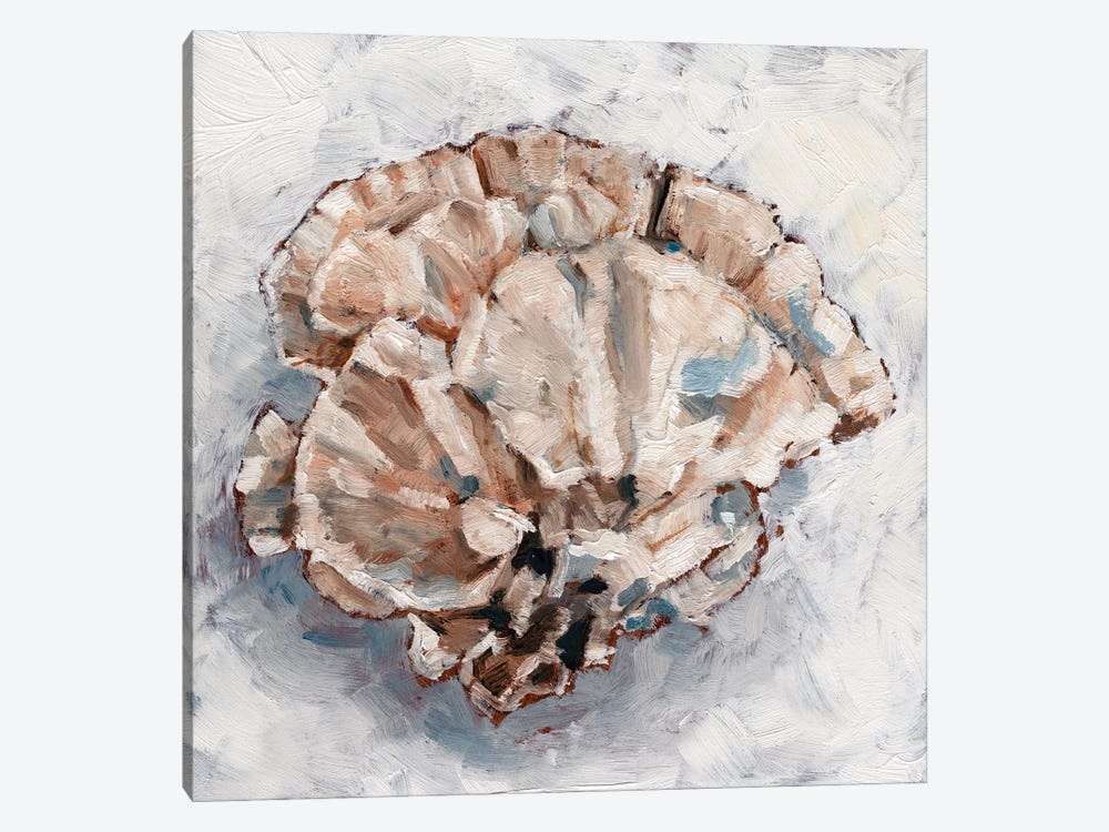 Coral Display III by Ethan Harper 1-piece Canvas Wall Art