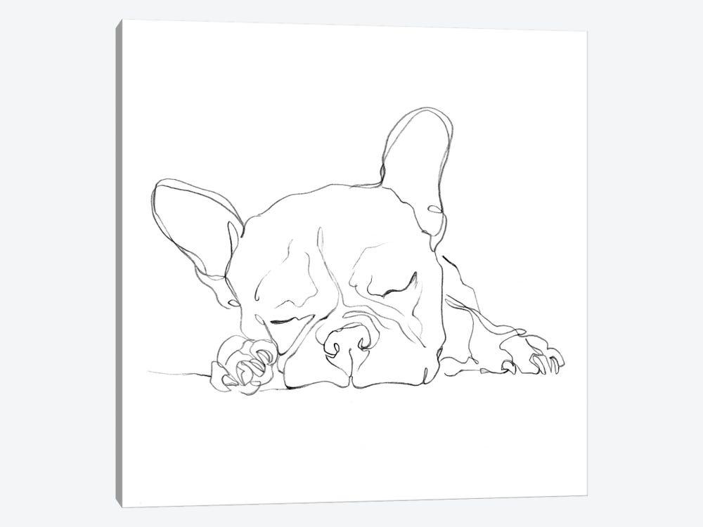 French Bulldog Contour I by Ethan Harper 1-piece Canvas Art Print