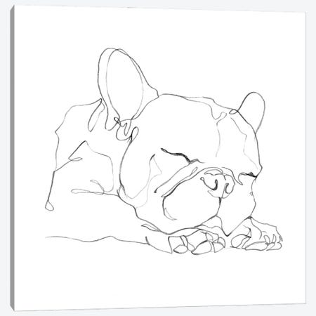 French Bulldog Contour II Canvas Print #EHA934} by Ethan Harper Art Print