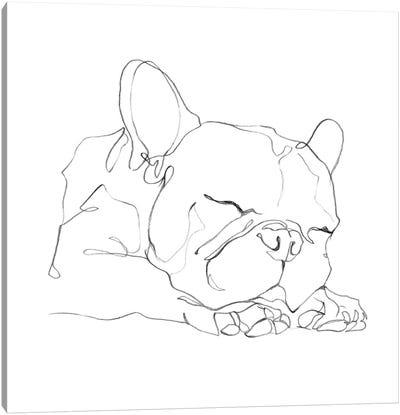 French Bulldog Contour II Canvas Art Print