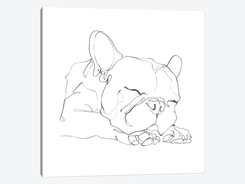 French Bulldog Contour II by Ethan Harper 1-piece Canvas Artwork