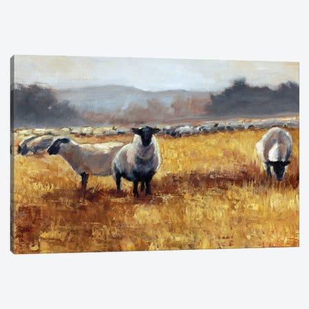 Grazing at Sunset I Canvas Print #EHA935} by Ethan Harper Canvas Print