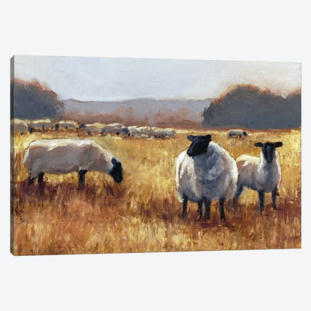 Grazing at Sunset II Canvas Print #EHA936} by Ethan Harper Art Print