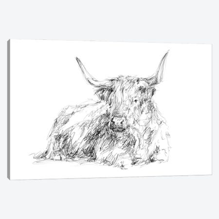 Highland Cattle Sketch I Canvas Print #EHA937} by Ethan Harper Art Print