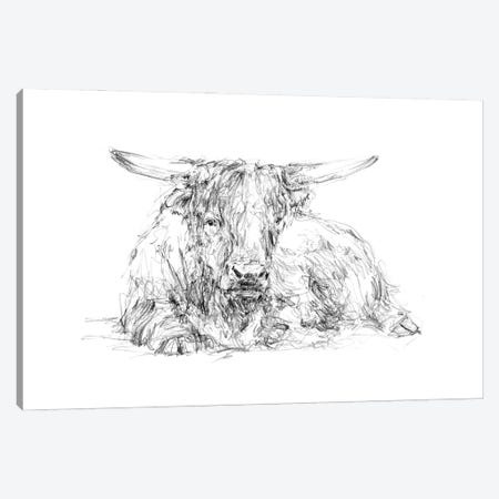 Highland Cattle Sketch II Canvas Print #EHA938} by Ethan Harper Canvas Artwork