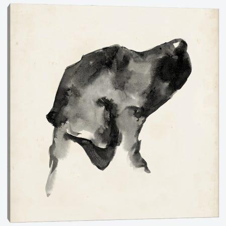 Puppy Profile I Canvas Print #EHA945} by Ethan Harper Canvas Wall Art