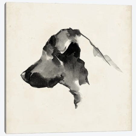 Puppy Profile II Canvas Print #EHA946} by Ethan Harper Canvas Art