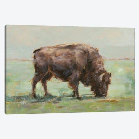 Where the Buffalo Roam I Canvas Print #EHA957} by Ethan Harper Canvas Art Print