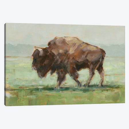 Where the Buffalo Roam II Canvas Print #EHA958} by Ethan Harper Canvas Wall Art