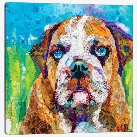 Bull Dog Canvas Print #EHL12} by Elizabeth St. Hilaire Canvas Print
