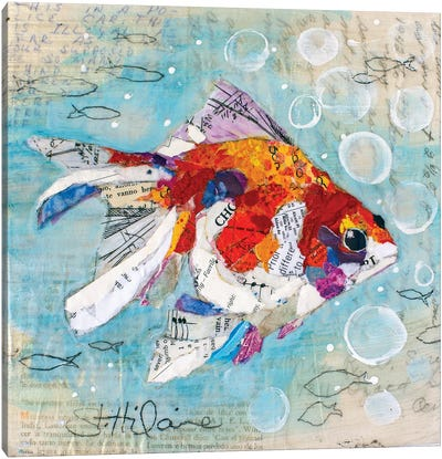 Fan Tail Goldfish Canvas Art Print