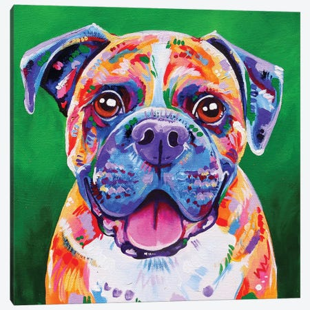 Boxer Canvas Print #EIZ11} by Eve Izzett Canvas Wall Art