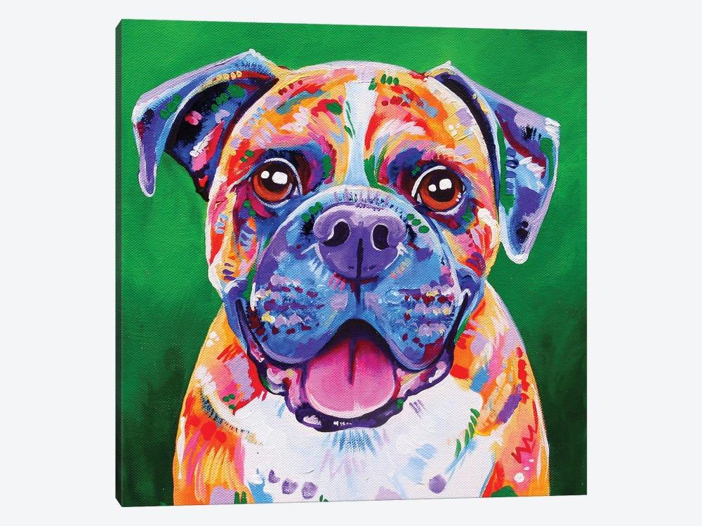 Boxer by Eve Izzett 1-piece Canvas Wall Art