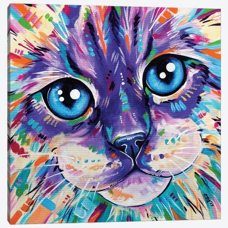 Cats In Colour I Canvas Print #EIZ12} by Eve Izzett Canvas Art