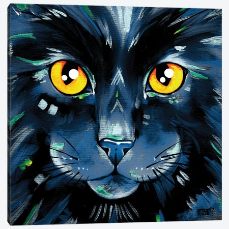 Cats In Colour II Canvas Print #EIZ13} by Eve Izzett Canvas Art