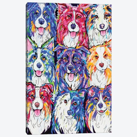 Collies In Colour Canvas Print #EIZ16} by Eve Izzett Canvas Art Print
