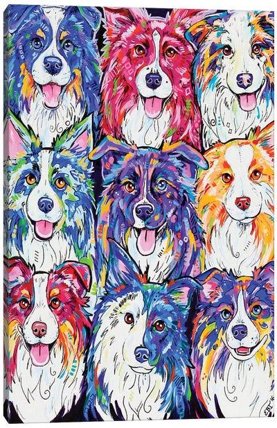 Collies In Colour Canvas Art Print