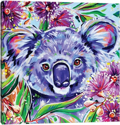Koala Square Canvas Art Print