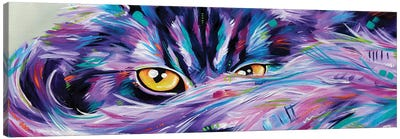 Let Sleeping Cat's Lie Canvas Art Print
