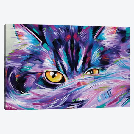 Let Sleeping Cat's Lie Rectangular Canvas Print #EIZ26} by Eve Izzett Canvas Art