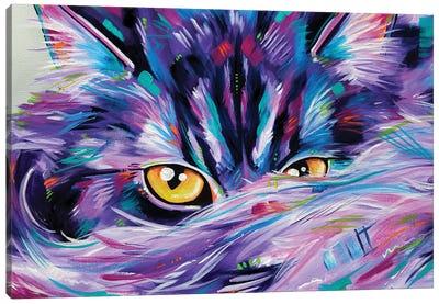 Let Sleeping Cat's Lie Rectangular Canvas Art Print