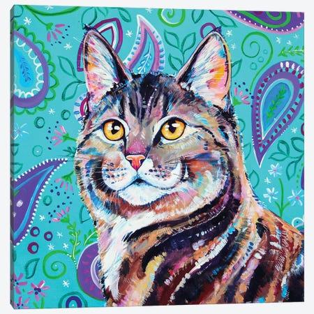 Tabby On Paisley 3-Piece Canvas #EIZ43} by Eve Izzett Art Print
